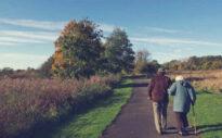 Rentenformel bei der privaten Vorsorge – Wie Versicherer eine lebenslange Rente berechnen