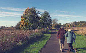 Wie Versicherer eine lebenslange Rente berechnen