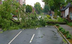Herbststürme – 7 Tipps, wie Hausbesitzer ihre Immobilie schützen können