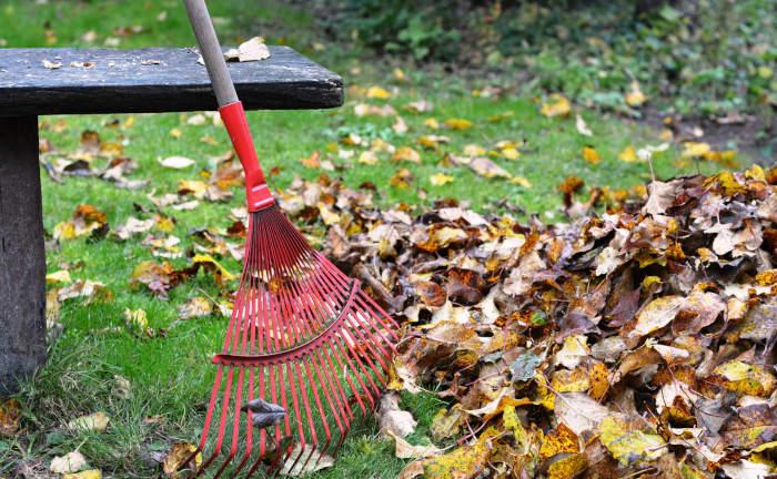 Gefährliches Herbstlaub: Wer muss die Blätter vom Gehweg fegen?