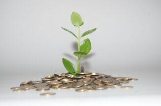 Nachhaltigkeit bei Geldanlage und Versicherung
