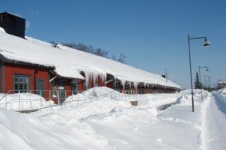 Wenn Schnee das Dach zum Einsturz bringt