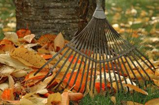Wer die Blätter vom Gehweg räumen muss
