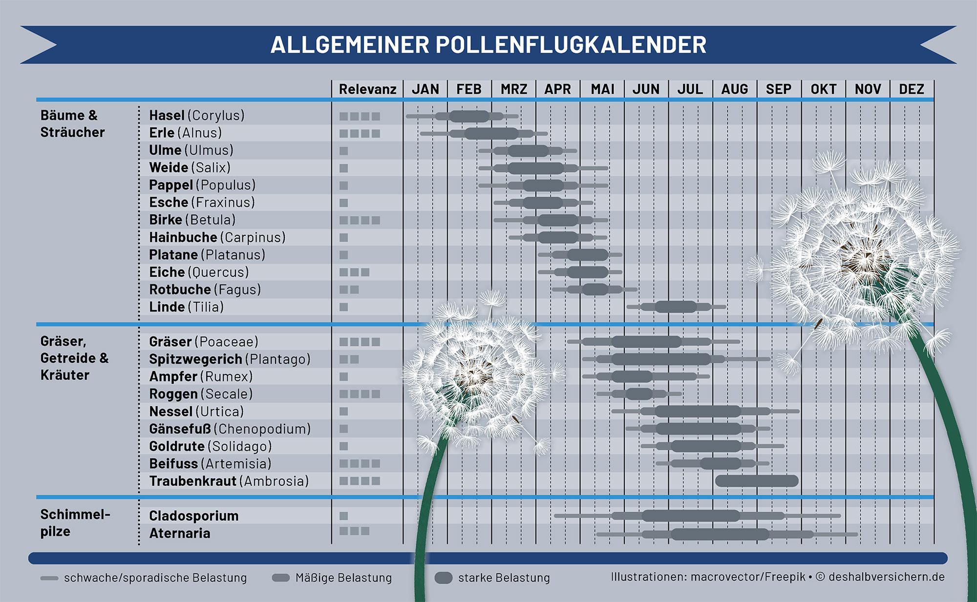 Triefnase, Husten und Atemnot: Trotz Pollenallergie fit durch den Frühling
