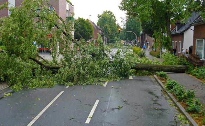 Wenn Stürme übers Land ziehen: Diese Verkehrssicherungspflicht haben Hausbesitzer